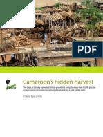 CameroonsHiddenHarvest en Web