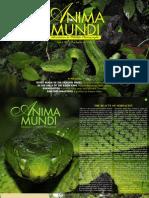 Magazine Anima Mundi