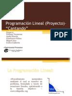 Programación Lineal 4 PROYECTO