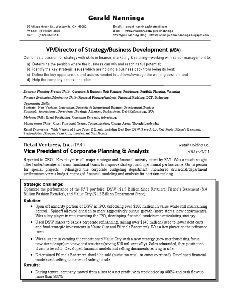 vice president finance marketing essay