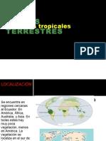 Biomas Terrestres Ivan