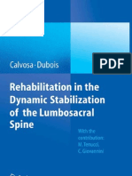 Rehabilitation in the Dynamic Stabilization of Lumbar Spine