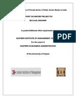 Winter Project Report Nilojjal