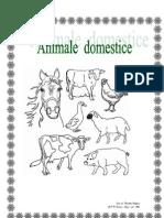 Animal Ed Om Est Ice