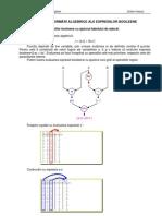 Trnasformari Algebrice Ale Expresiilor Binare