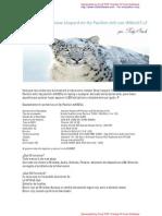 Instalar Snow Leopard 10.6.3 Por Roly