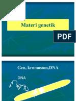 Materi genetik GENTUM
