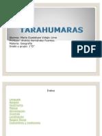 tarahumaraas