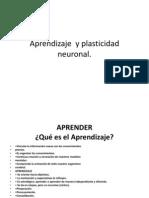 Aprendizaje y Plastic Id Ad Neuronal