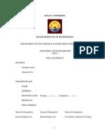 It Report Format Details-1