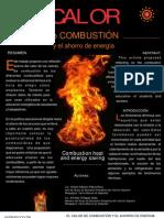Calor de Combustion