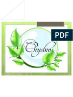 chydro-1 ppt