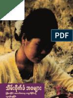 Stolen Lives Burmese for Web2