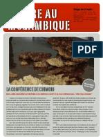 Blog Chimoio Red (1)