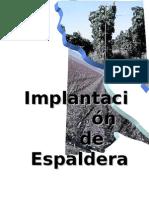 implantacion de espalderas