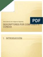 Descriptores Por Componente Conexa