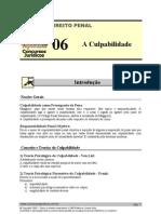 PEN 06 - A Culpabilidade