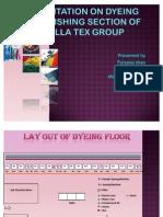 FARJANA Dyeing Presentation