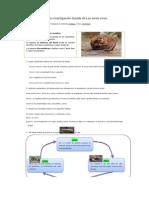 Guía de investigación castor PresenUniversidad