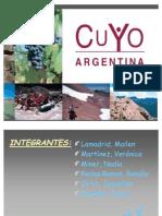 Region Cuyo (año 2009)