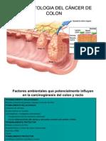FISIOPATOLOGIA DEL CÁNCER DE COLON