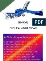 pdf_Pser_29_04_2007