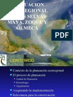 EVALUACION ECORREGIONAL DE LAS SELVAS MAYA, ZOQUE Y OLMECA