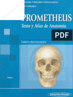 Anatomia Prometheus T3 Medicina Program as Full