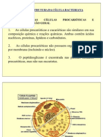morfologia_bacteriana Tortora - Cópia