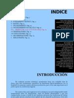 Labo de Mecanica I-temperatura