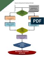 Pathophysiology- Pleural Effusion