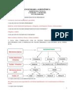 ESTUDO DIRIGIDO DE MORFOLOGIA VEGETAL 2º BIMESTRE (1)