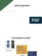 Ilcodicegenetico2