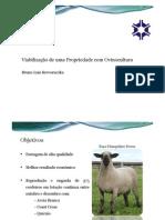 Viabilização de uma Propriedade com Ovinocultura