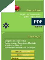 A cultura do Amendoim