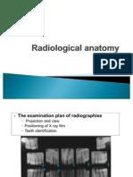 Anatomie radiologica (1)