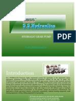 Hydraulic gear pump,
