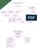 Tejido Conjuntivo Mapas Conceptuales 2
