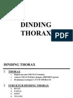 Dinding Thorax (Univ)
