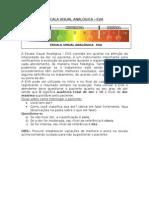 escalavisualanalogica (1)