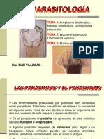 Diapositivas parasitologia
