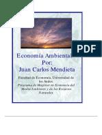 (2) economia ambiental- mendieta