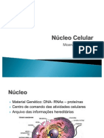 núcleo