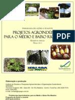 Relatório Síntese - Projeto Agroindustrias para o Médio e Baixo Rio Madeira