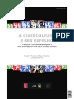 A Cibercultura e Seu Espelho