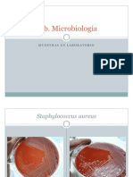 Pruebas Bioquimicas Microbiologia