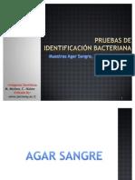 Pruebas Bioquimicas Microbiologia 3