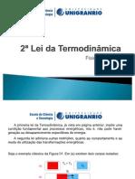 2a_Lei_Termodinâmica (1)