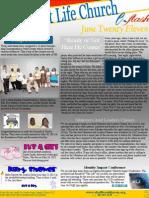 E-Flash June 2011