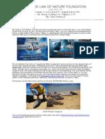 Oposa, Anna_Manila Ocean Park_Shark Attack